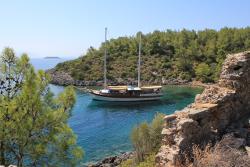 Crique avec bateau