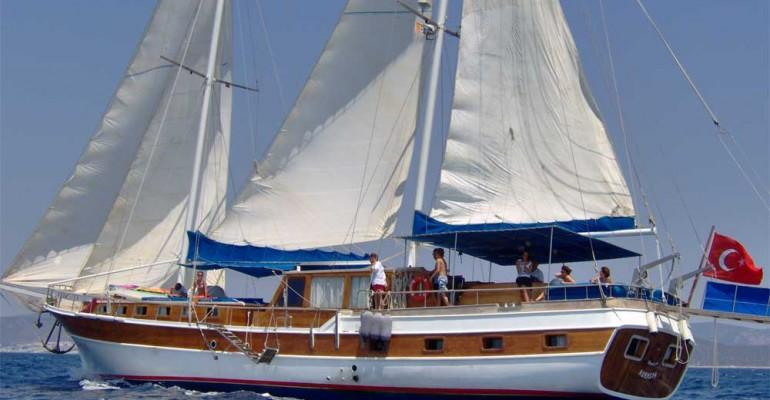 Goélette navigue